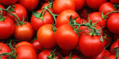 Tomaten zijn gezond om deze 5 redenen